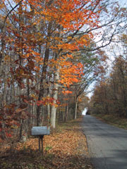 Hoy Road in Fall